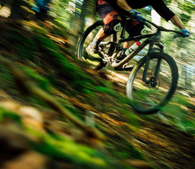 Mountain Biking Nithbank Country Estate